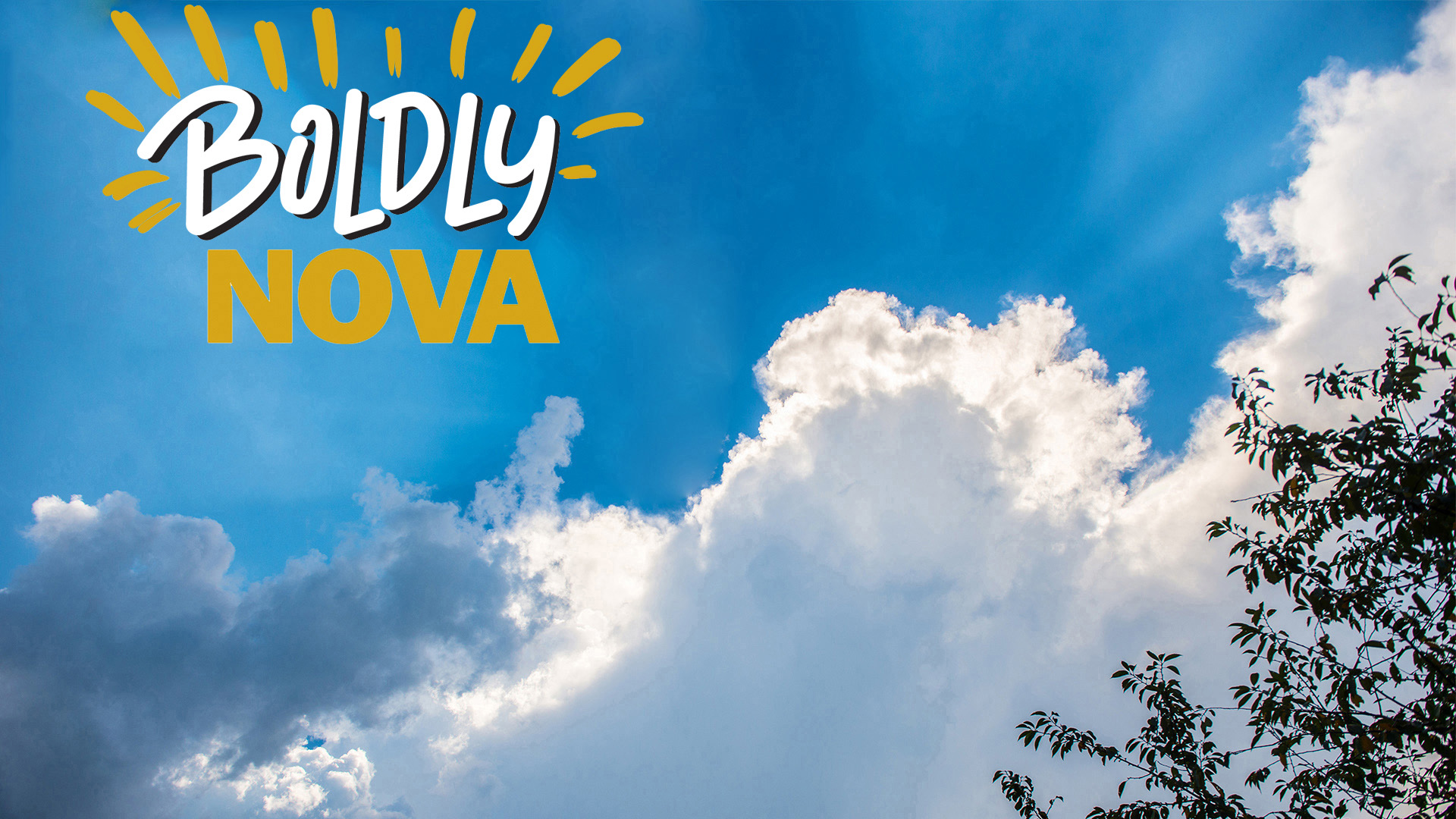 Boldly NOVA - Northern Virginia Community College