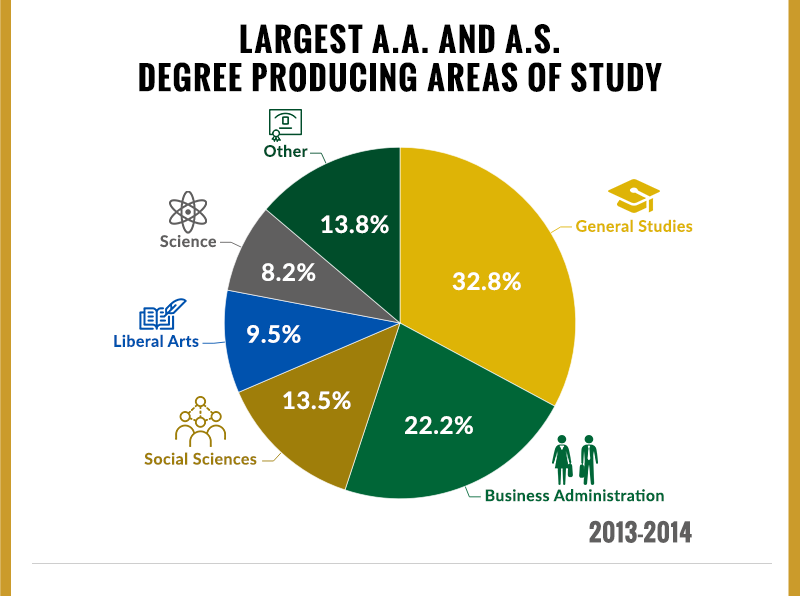 Areas of Study by Degree