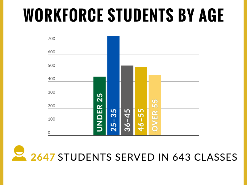 Workforce Students by Age