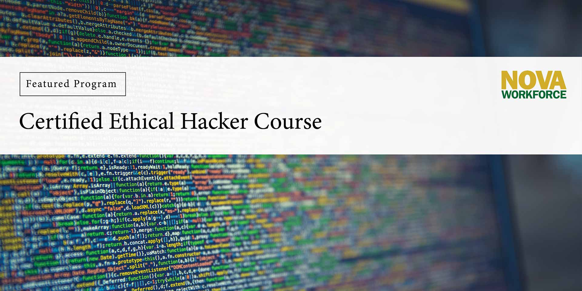 how to become a certified ethical hacker in india